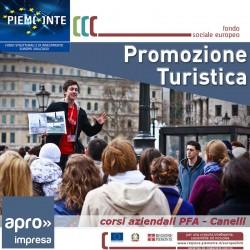 Tecniche di promozione turistica