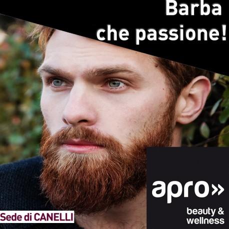 Seminario barba